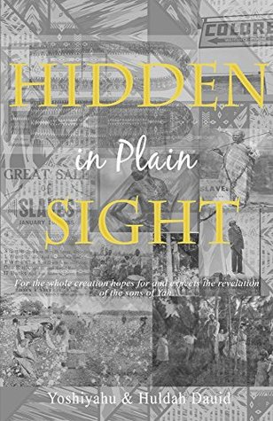 Hidden in Plain Sight by Huldah Dauid
