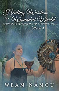 Healing Wisdom for a Wounded World: My Life-Changing Journey Through a Shamanic School: Book 4