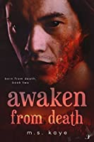Awaken From Death (Born From Death Book 2)