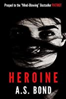 Heroine: Brooke Kinley Adventures #2
