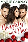 Naughty and Nice (Double the Fun, #4)