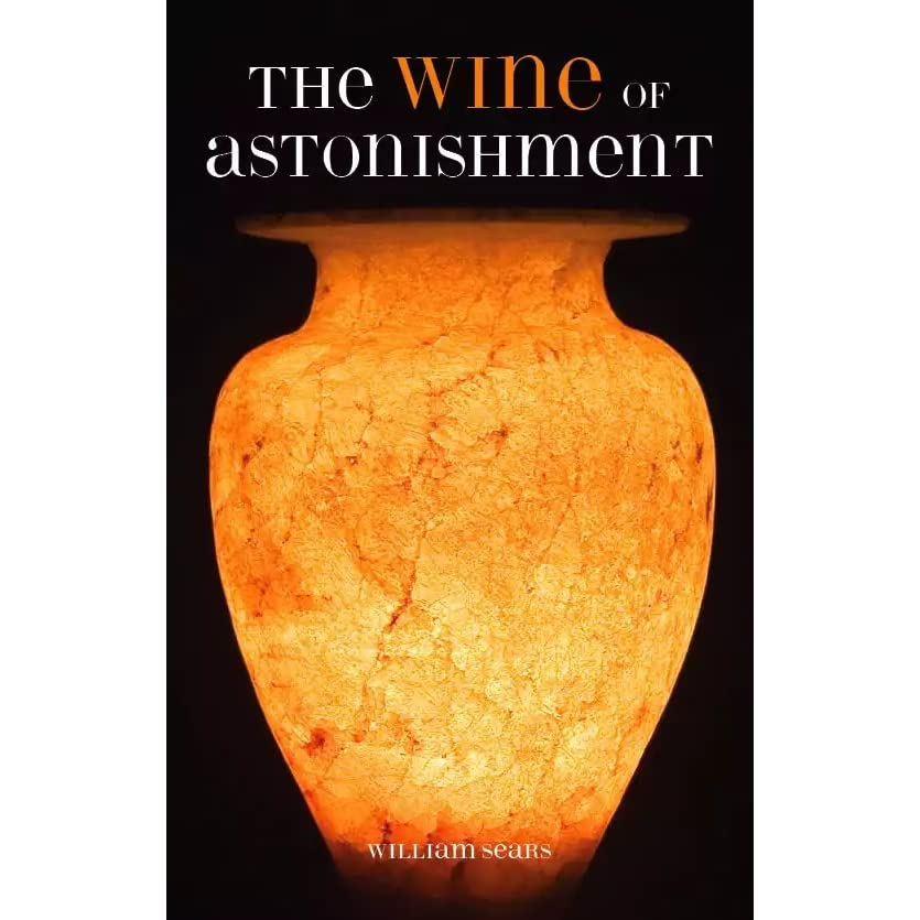 the wine of astonishment summary Transcript of wine of astonishment chapter 2.