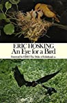 Eye for a Bird: Autobiography of a Bird Photographer