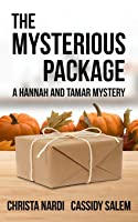The Mysterious Package: A Hannah and Tamar Mystery