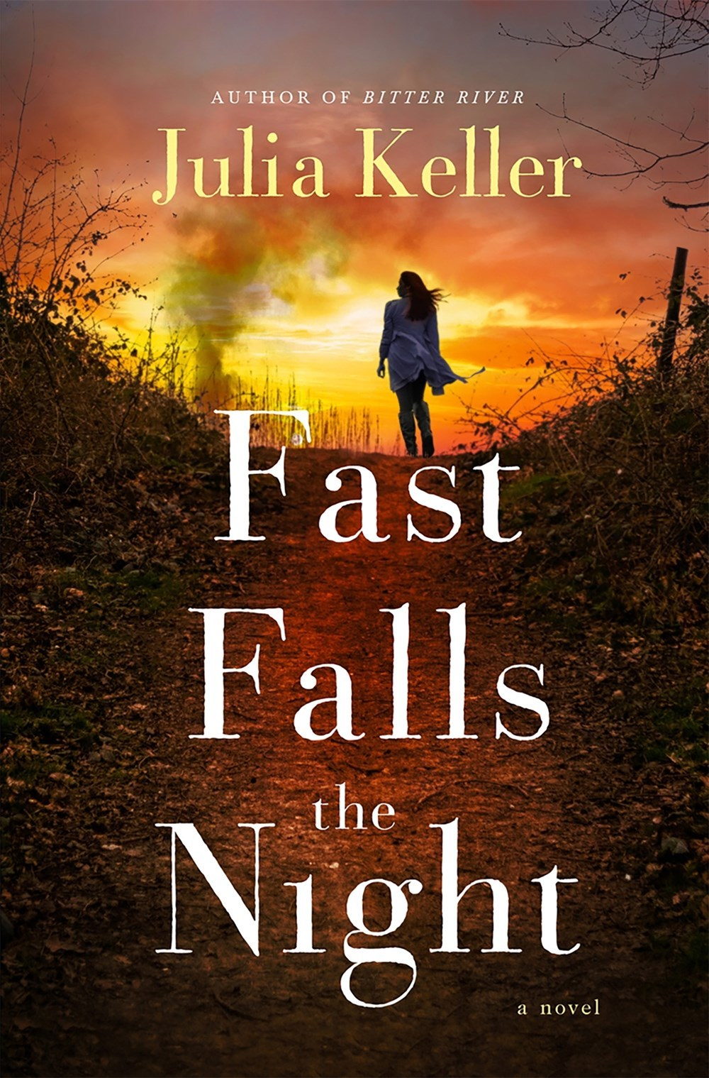 Image result for fast falls the night julia keller