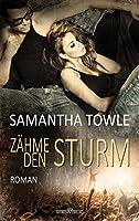 Zähme den Sturm (The Storm #3)