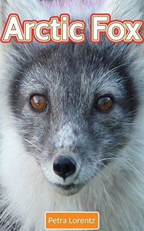 Arctic Fox Petra Lorentz