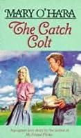The Catch Colt