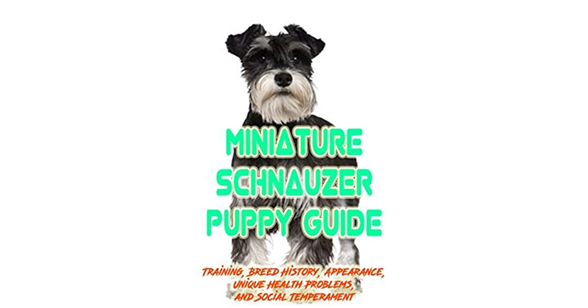 Miniature Schnauzer Puppy Training Guide Training Breed History Appearance Unique Health Problems And Social Temperament By Eden Watkins