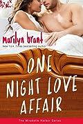One Night Love Affair