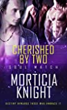 Cherished by Two (Soul Match, #2)