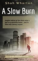 A Slow Burn: Post-Apocalyptic Horror