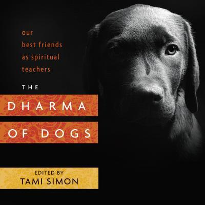 The Dharma of Dogs Our Best Friends as Spiritual Teachers
