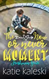 The Now or Never Moment: Freshman Year (The Now or Never Moment #1)