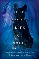 The Secret Life of Souls: A Novel