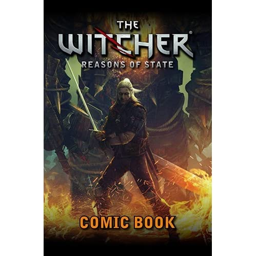 The Witcher: Reasons of State by Michał Gałek