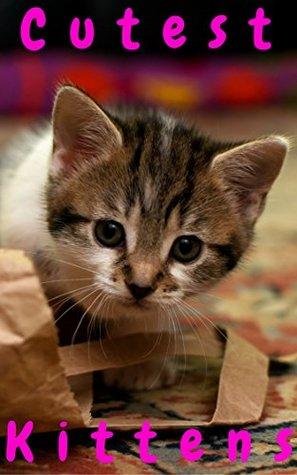Cutest Kittens: 1500+ Picture Cutest Kittens Cats Photobook for Kids (BABY KITTENS Cats Dogs Cute Fluffy Animals For Children ,Cat Memes,cat photobook ... bybee,Cat School,Cutest Kitt 8)