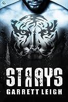 Strays (Urban Soul, #2)