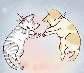 Cat-to-dog introductions