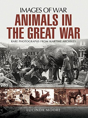 Animals in the Great War (Images of