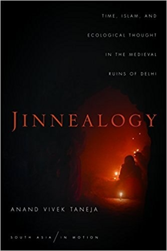 Jinnealogy Time, Islam, and Ecological Thought in the Medieval Ruins of Delhi