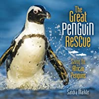 The Great Penguin Rescue: Saving the African Penguins