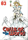 Cells at Work!, Vol. 3