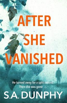 After She Vanished (David Dunnigan, #1)