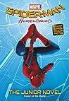 Spider-Man by Jim McCann