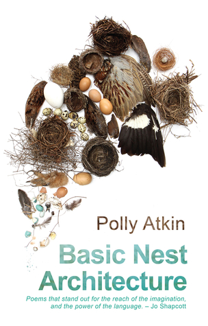 Basic Nest Architecture by Polly Atkin