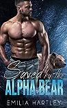 Saved by the Alpha Bear (Alpha Bears, #2)
