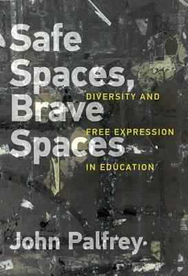 Safe Spaces, Brave Spaces: Diversity and Free Expression in Education