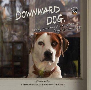 Downward Dog by Samm  Hodges