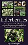 Elderberries by Alicia Bayer