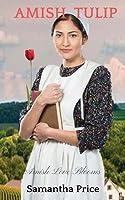 Amish Tulip