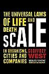 Scale: The Univer...