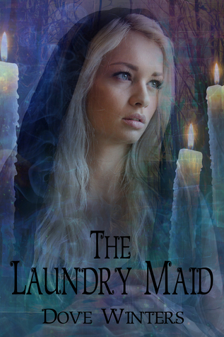 The Laundry Maid by Dove Winters