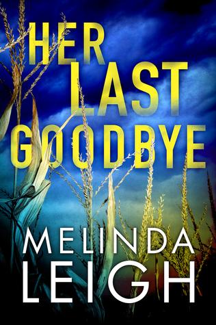 Her Last Goodbye (Morgan Dane, #2)