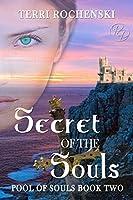 Secret of the Souls (Poul of Souls Book 2)