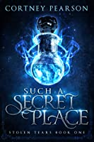 Such A Secret Place (Stolen Tears, #1)