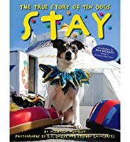 Stay, The True Story of Ten Dogs (Paperback)