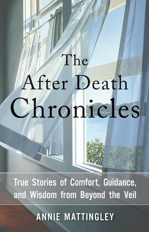 The After Death Chronicles True Stories of Comfort, Guidance, and Wisdom from Beyond the Veil
