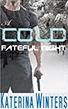A Cold Fateful Night: An adventure Romance