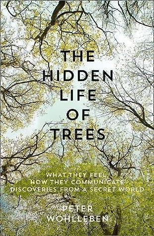 Tree Listener: an eco-thriller