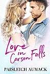 Love in Carson Falls (The Falls Series Book 1)