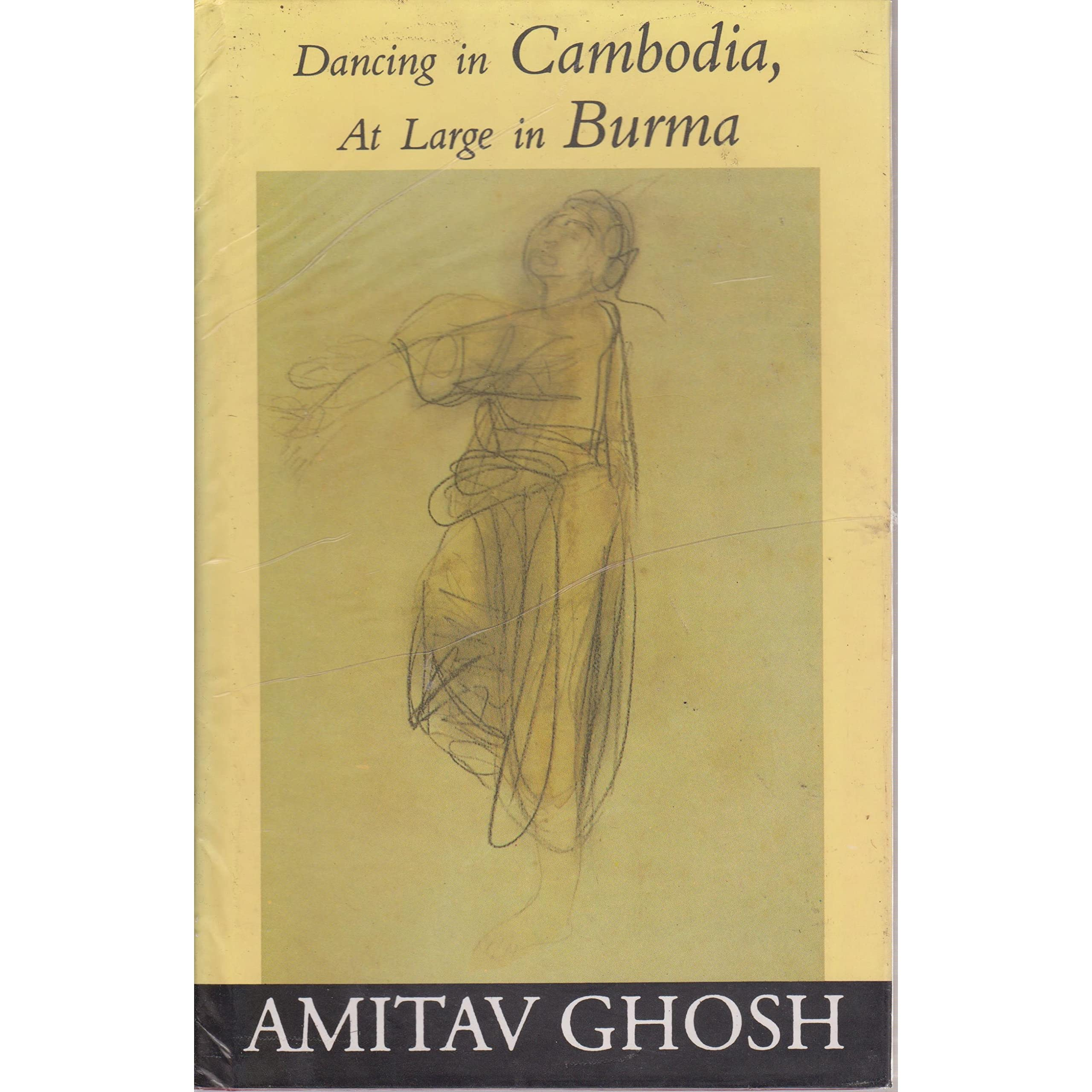 amitav ghosh essay The hungry tide essay topics amitav ghosh the hungry tide 53-page comprehensive study guide features 66 chapter summaries and 5 sections of expert analysis.
