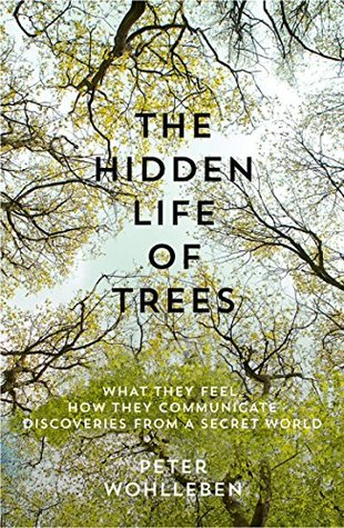 The Hidden Life of Trees What They Feel How They