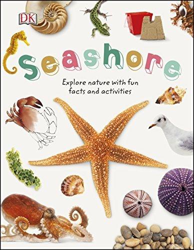 Seashore-Explore-the-world-of-shells-sea-animals-and-shore-plants
