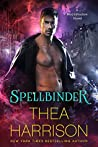 Book cover for Spellbinder (Moonshadow, #2)