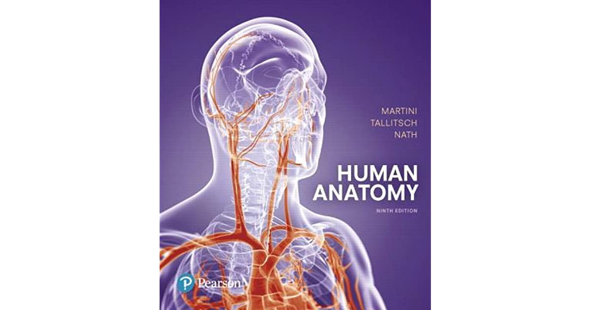 Human Anatomy By Frederic H Martini